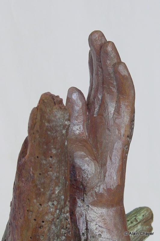186.1 - Neg Marron (Zoom détail) - 2007 H 51 Patine iridescente sur bois