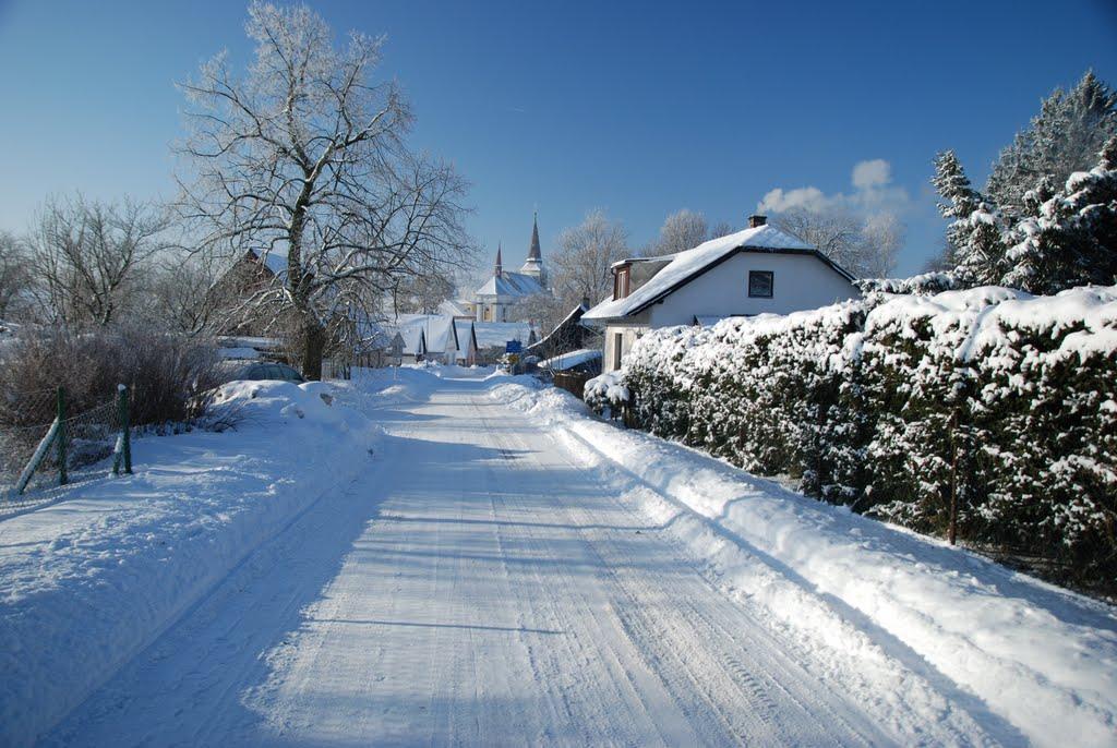Ladovská zima 2010 - DSC_1542
