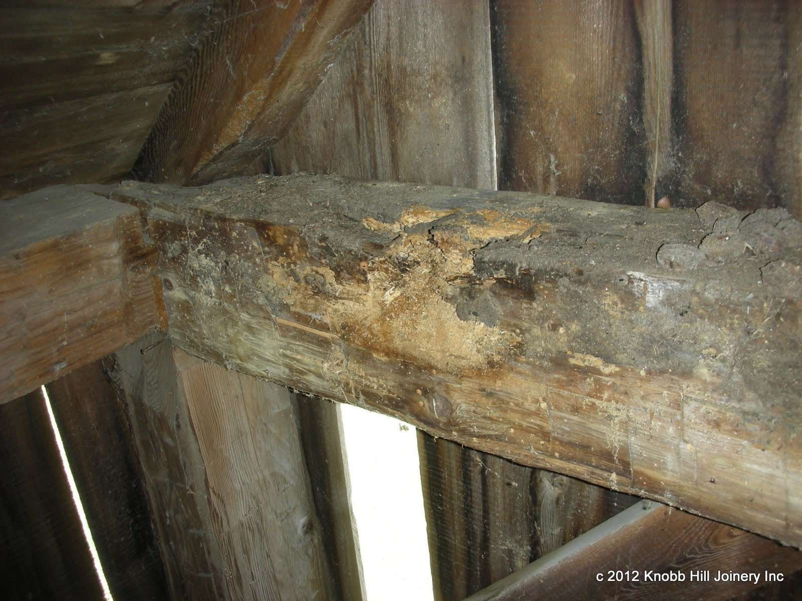 This gable tie beam had severe rot at both ends.  The remaining timber was able to be reused to replace a rotten corner post.