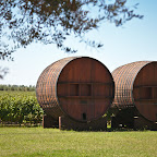 Huge wine barrels in Maipo