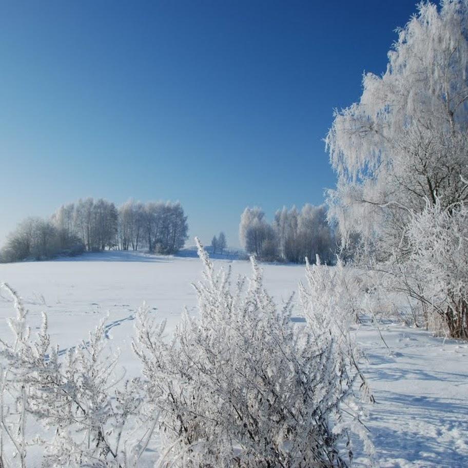 Ladovská zima 2010 - DSC_1557