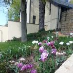 Christiane Junio's Garden