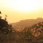 The last sunset in Hong Kong, you could know you can escape the Urban Jungle and enjoy it in the nature like this?