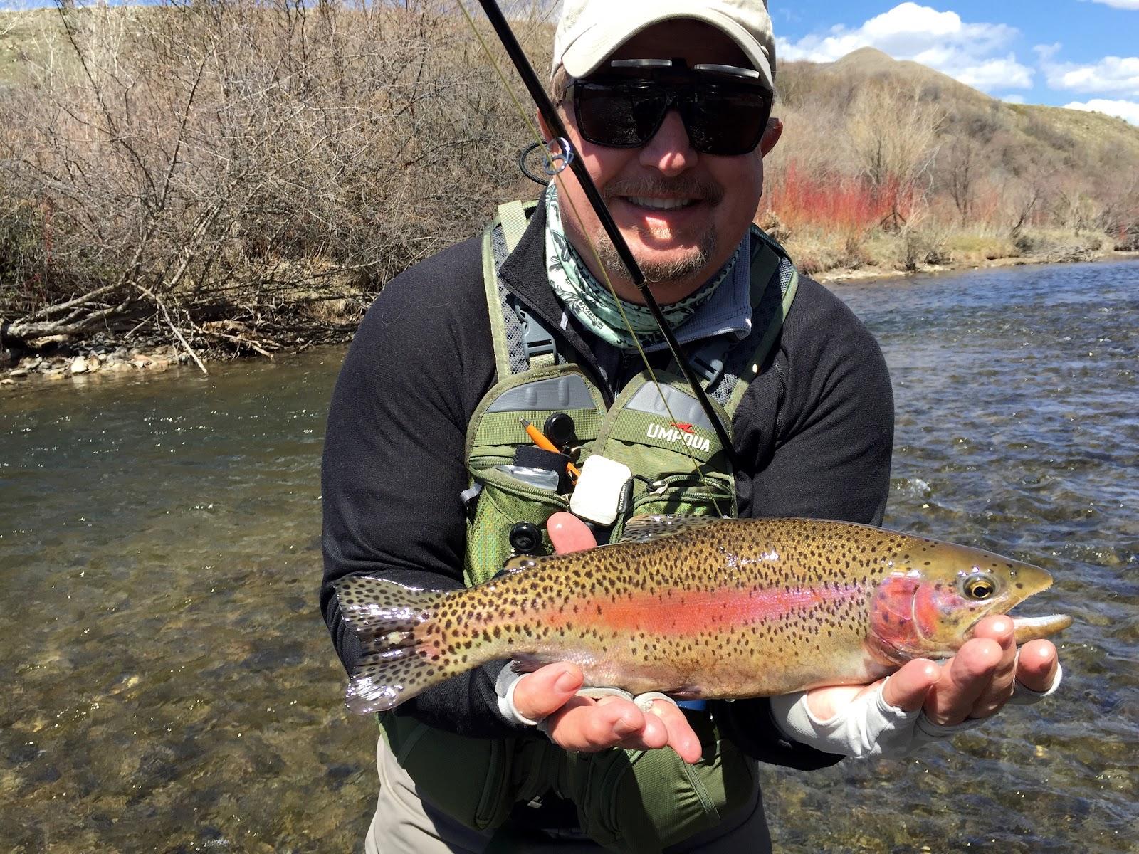 Provo River - Rainbow