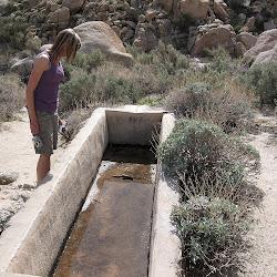 Old watering trough near Mortero Palms.