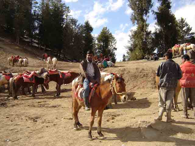 Horse riding in Kufri