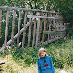 Ruins of old barn, Frog Alley, 2000