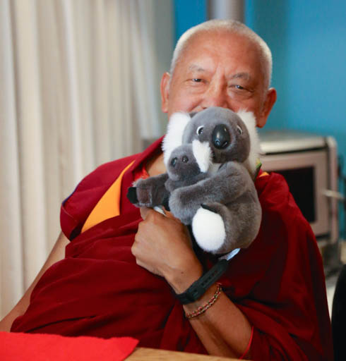 Lama Zopa Rinpoche, Blue Mountains, Australia, June 2015. Photo by Ven. Roger Kunsang.