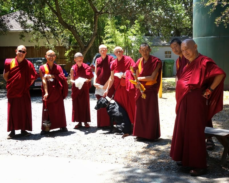 Waiting for Jangtse Chöje to arrive at Kachoe Dechen Ling, Aptos, California, June 2014. Photo by Ven. Roger Kunsang.