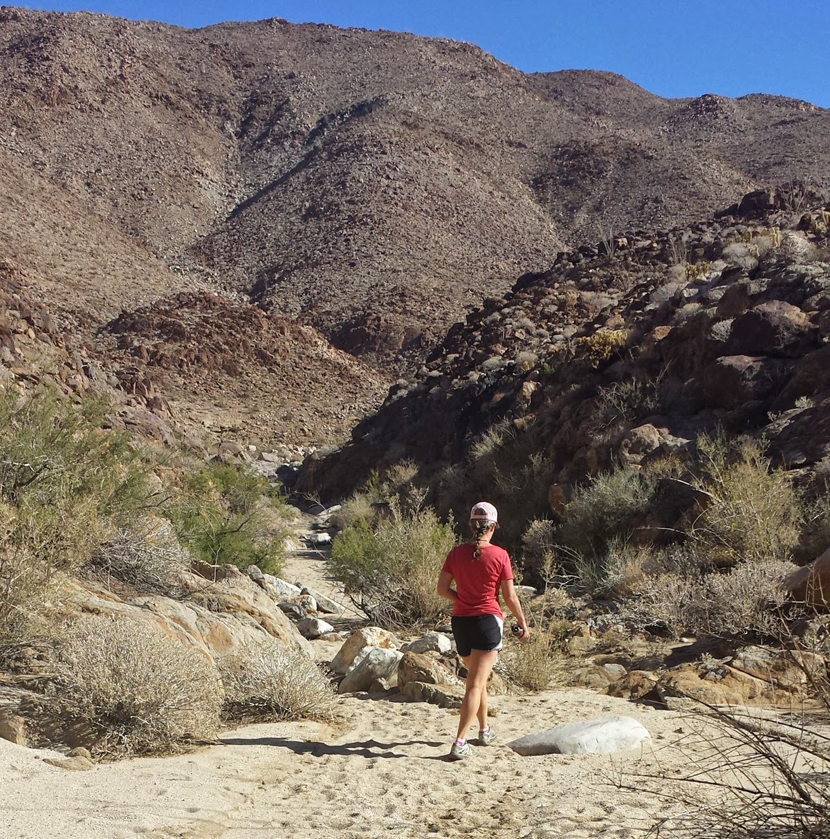 Beautiful sunny morning as we began our hike up the East Fork of Carrizo Gorge.