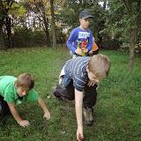 Přenášení kaštanů na hřišti Pod Kaštany (2)