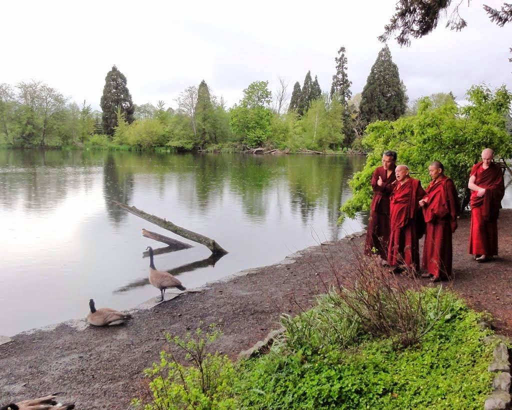 Lama Zopa Rinpoche reciting mantras for the geese with Yangsi Rinpoche (on left), Crystal Springs Rhododendron Garden, Portland, Oregon, US, April 2014. Photo by Ven. Holly Ansett.