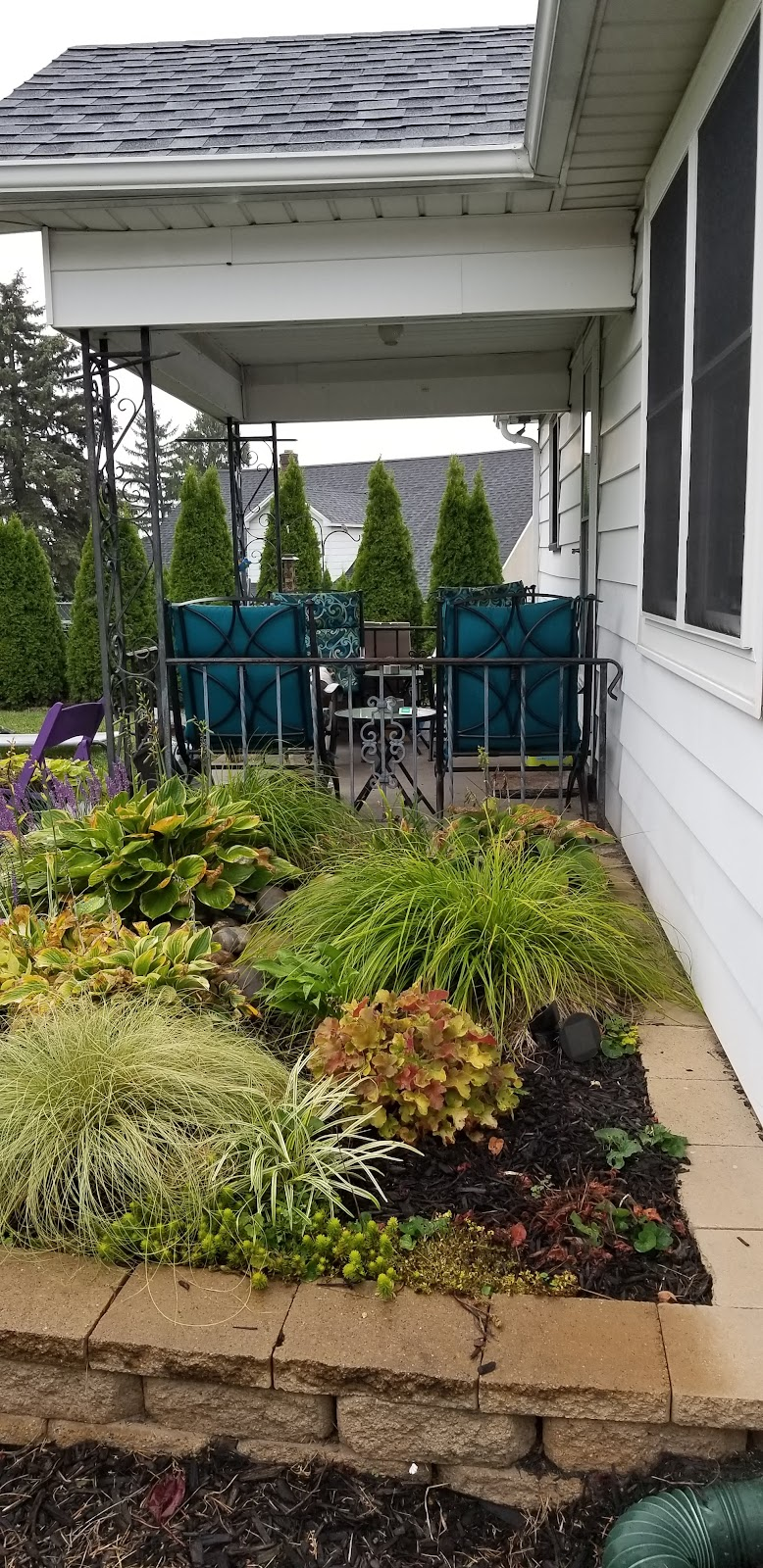 Sept 14 2019... Back porch view