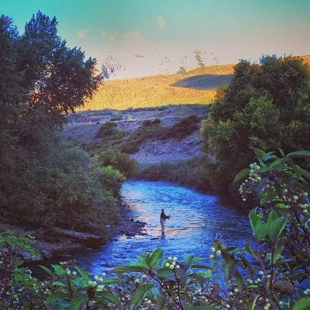 Provo River - Fly Fishing
