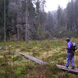 Adršpašsko-Teplické skály (9) - Vlčí rokle