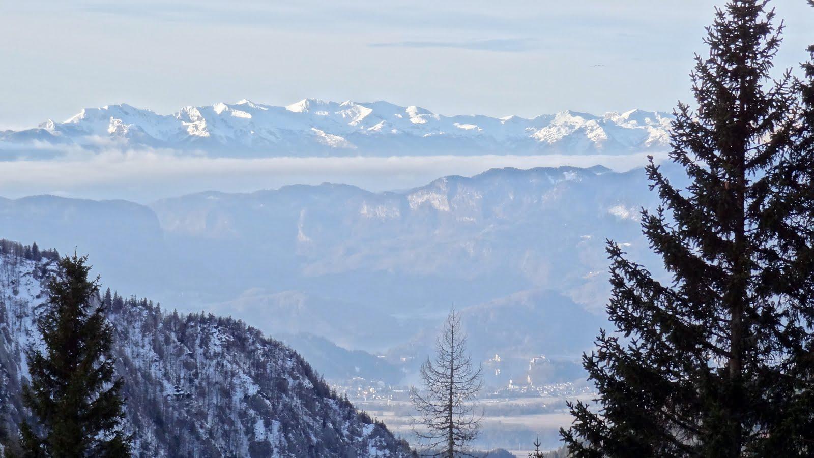 Iza malog bora - Bled