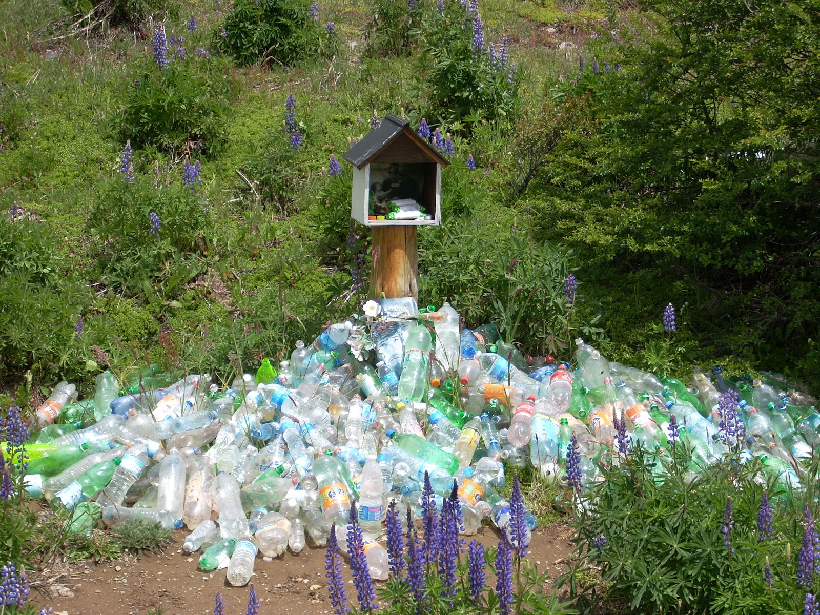 I´m not quite sure why you should leave a plastic bottle at this shrine