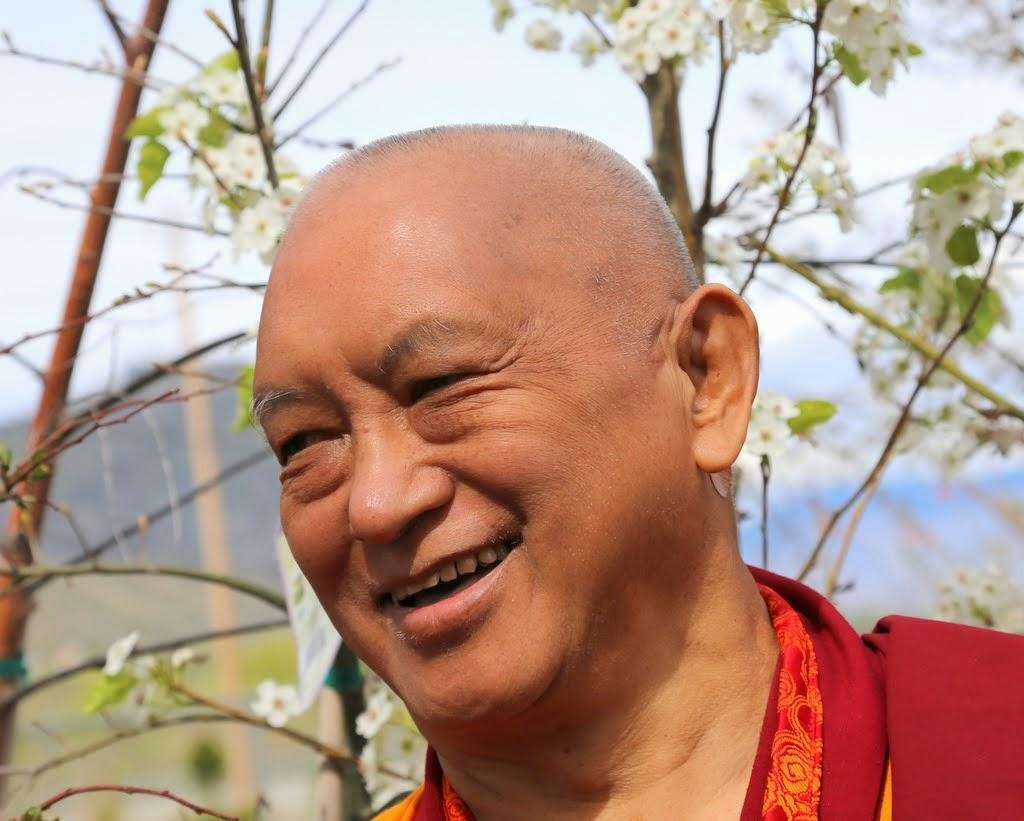 Lama Zopa Rinpoche visiting a garden store/plant nursery, Washington, US, April 2014. Photo by Ven. Thubten Kunsang.