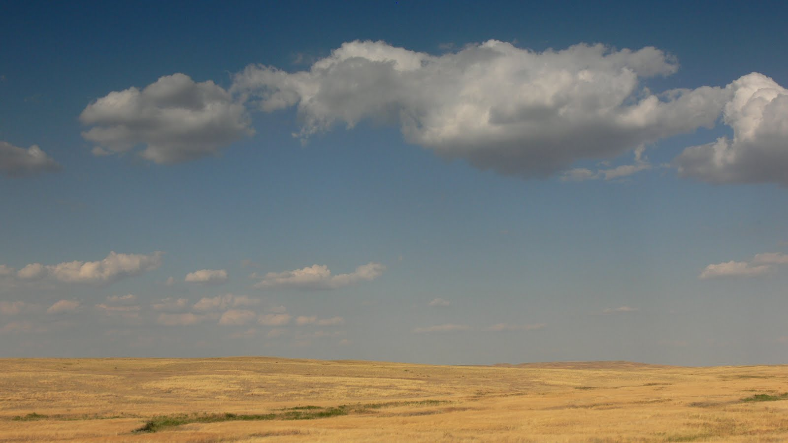 Stepy Kazachstanu