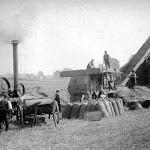 Nathaniel Humfrey (centre) threshing at Upton, c1880