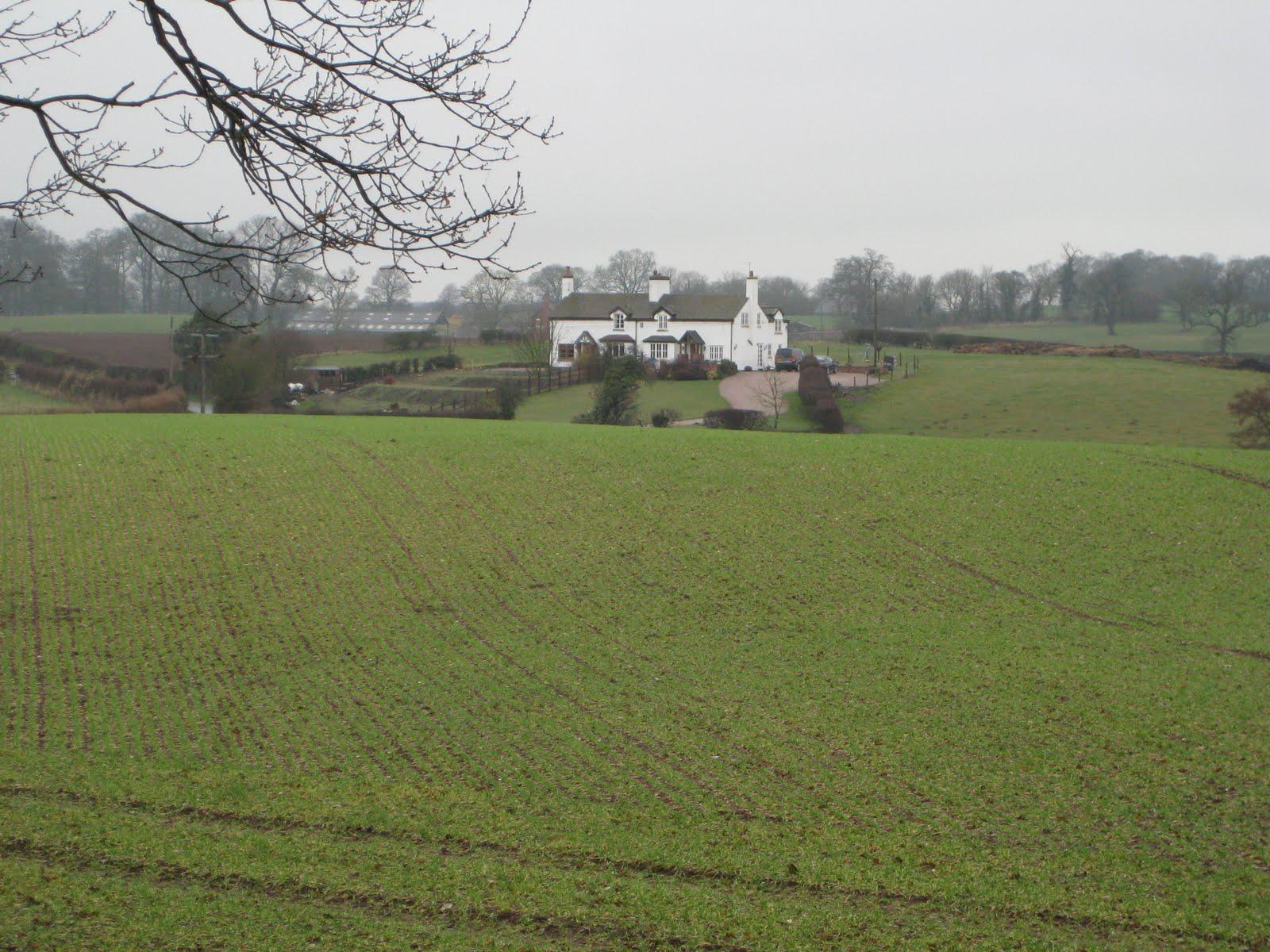 Farmland scene