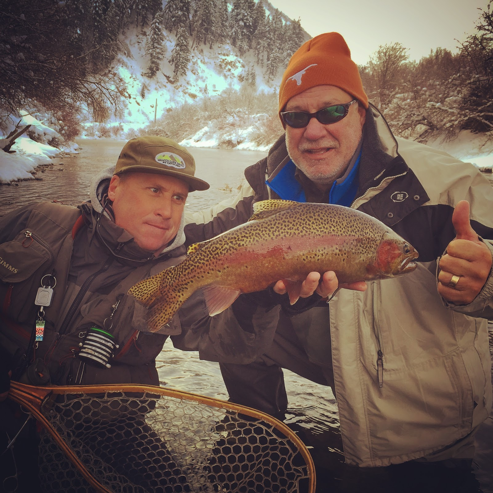 Provo River Rainbow Trout