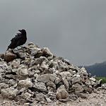 2013 恐山
