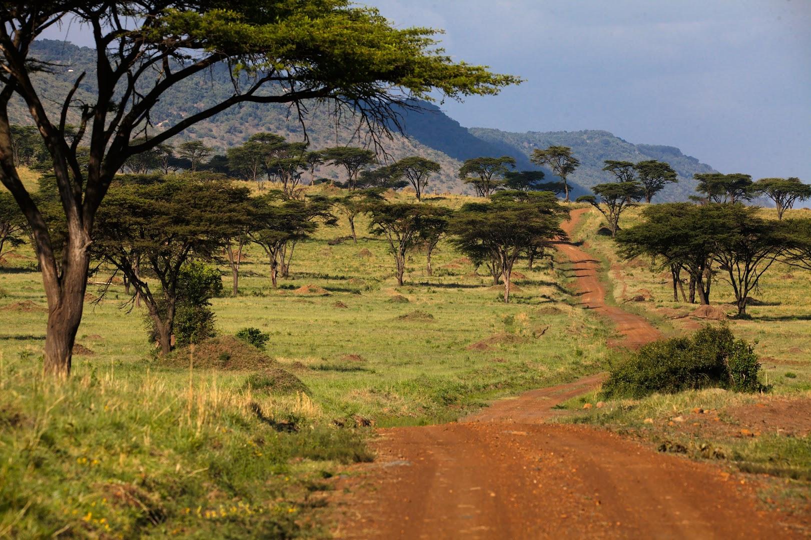 Masai Mara is beautiful after rains