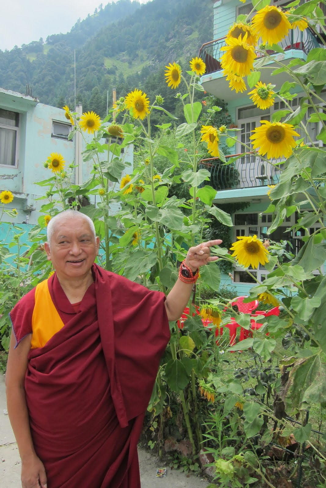 Rinpoche in Manali, India, July 30, 2013. Photo: Ven.Sarah Thresher