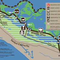dingdarling_map
