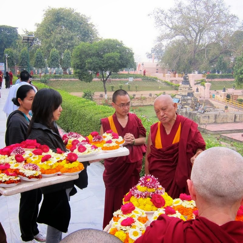 Lama Zopa Rinpoche making extensive flower offerings at the Mahabodhi Stupa, Bodhgaya, India, February 2014. Photo by Ven. Sarah Thresher.