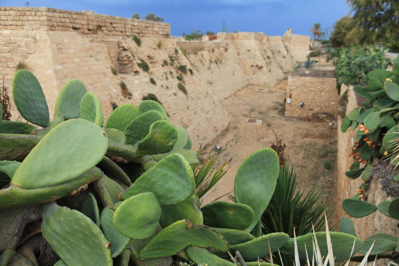 Caesarea exterior - an old Roman fortress