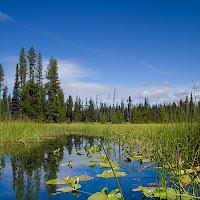 20110921_hosmer_lake_P9180437