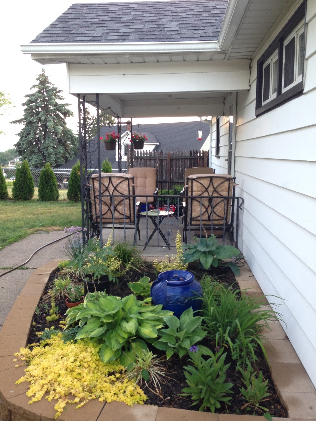 My backyard - garden bed, fountain, coz porch with hanging baskets, humingbird feeder, privacy fence, and arborvitae trees. Heaven.