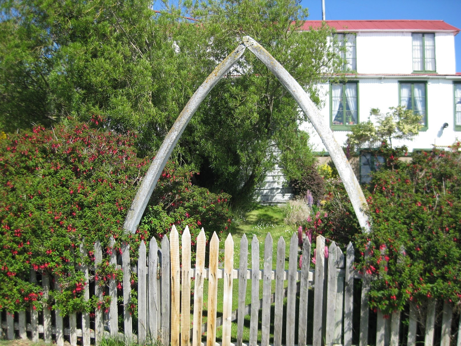 I want whalebones over my gate