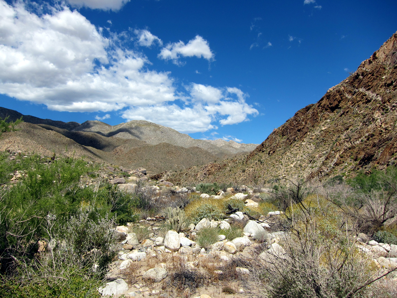 Brilliant blue desert skies framed most of our hike through Carrizo Gorge