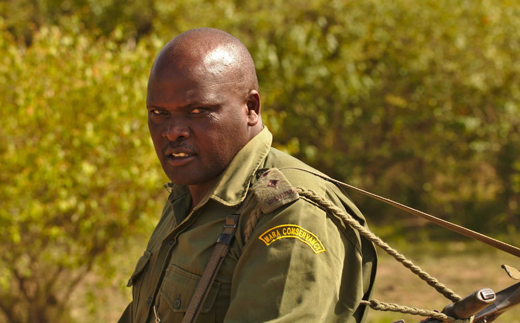 Rangers sometimes need to fight with the poachers