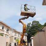 拆滅蜂巢   Wasp Nest Removal