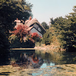 Pond at West Hagbourne, 1995