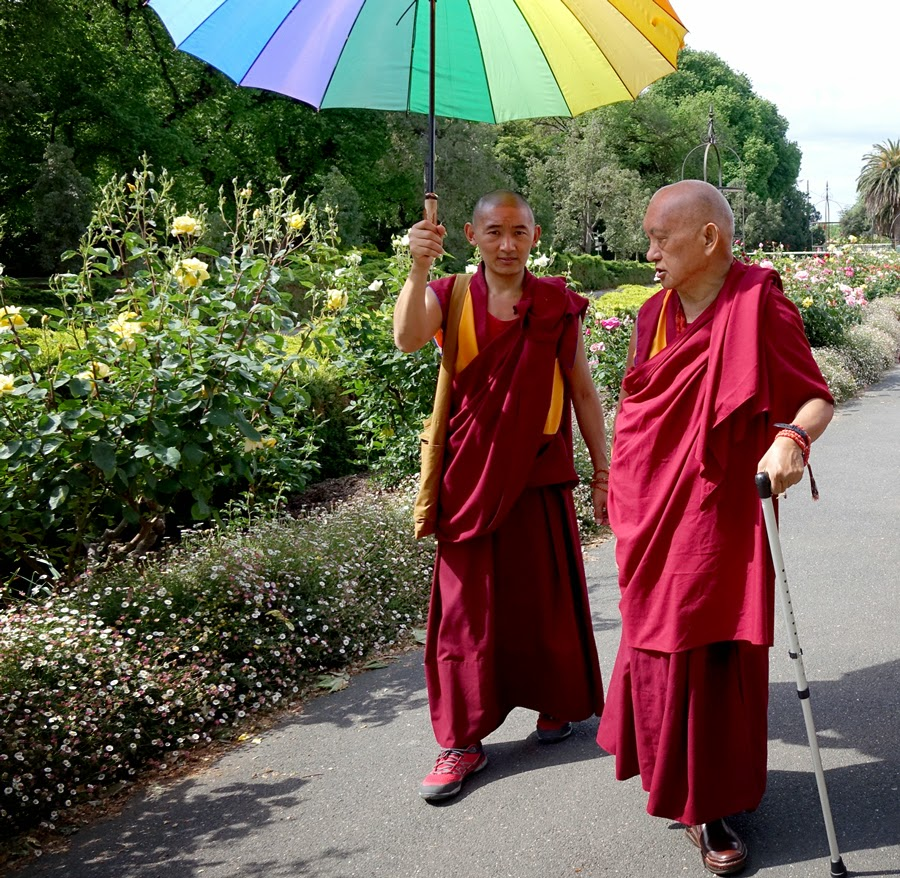 Lama Zopa Rinpoche in the park, Bendigo, Australia, October 2014. Photo by Ven. Roger Kunsang.