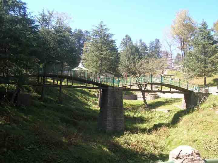 inside Himalayan National Park Kufri