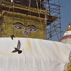 Buddha is watching you