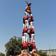 "Castells ""Catalans Want to vote"" 8-06-14"