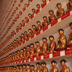 Yes, yes, ten thousand buddhas here! Actually more than 12000 to be more correct... Crazy!