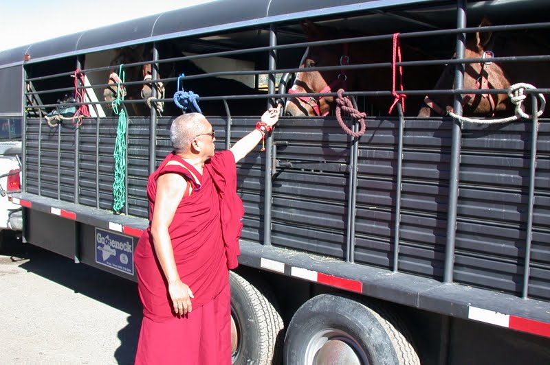 Lama Zopa Rinpoche blessing horses in USA
