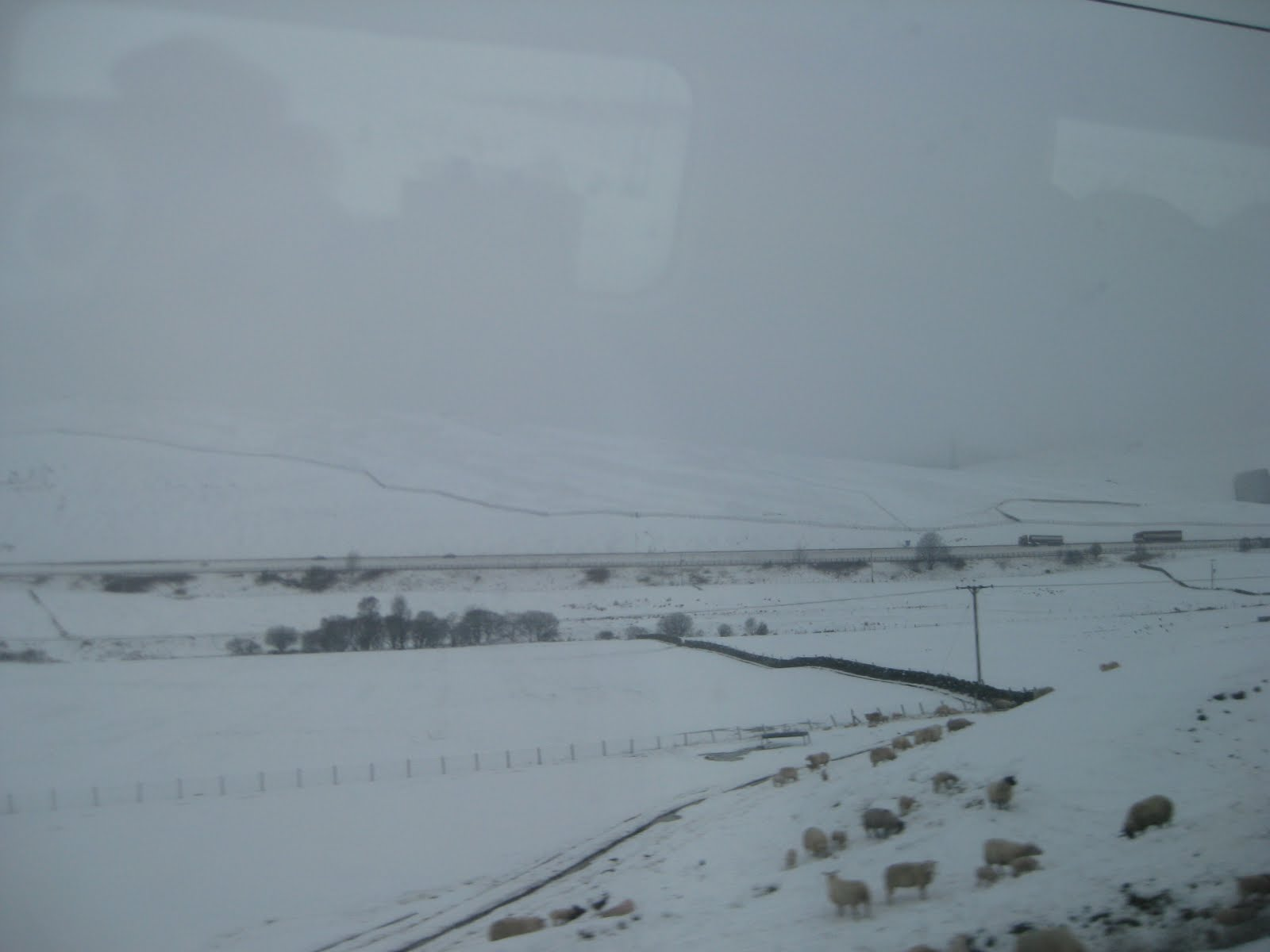 Borders region, viewed from a warm train