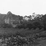 Upton Lodge