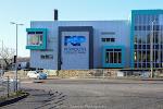 Dolphin School.004