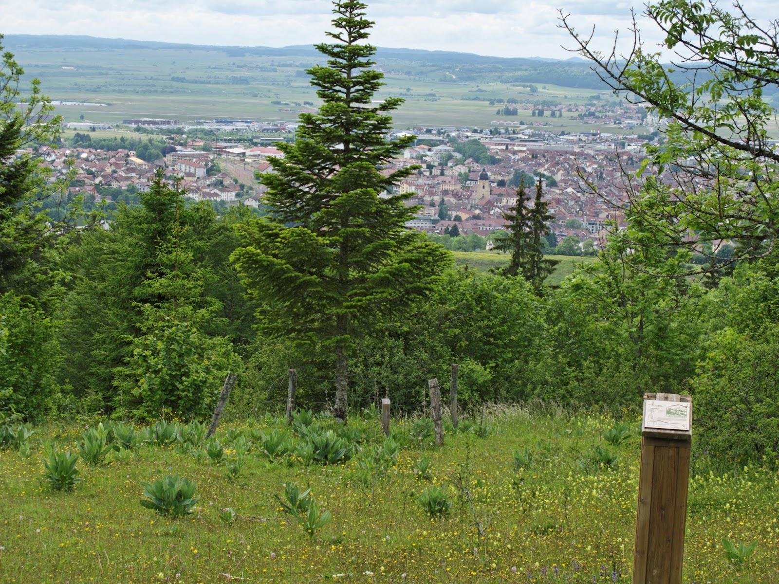 Pontarlier vu de l'Arboretum