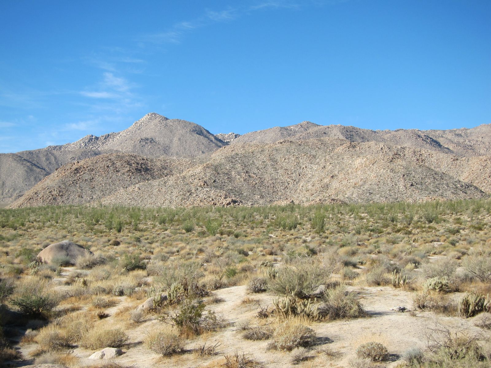 Sombrero Peak is the highest mountain in the Southern Anza Borrego Desert